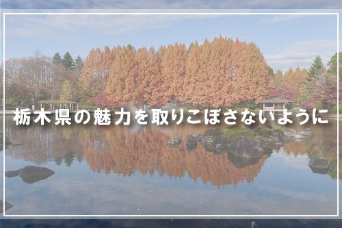 栃木県の魅力を取りこぼさないように