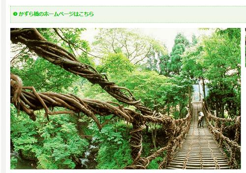 池田町のかずら橋