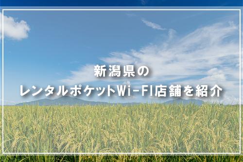 新潟県のレンタルポケットWi-FI店舗を紹介