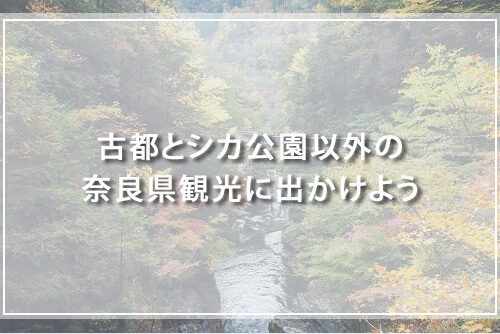 古都とシカ公園以外の奈良県観光に出かけよう