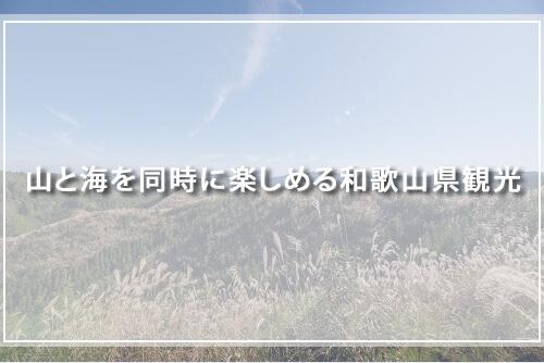 山と海を同時に楽しめる和歌山県観光